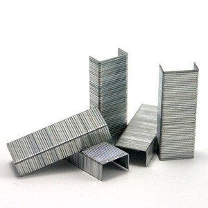"5/8"" x 1¼"", Staples, 2000/Box"